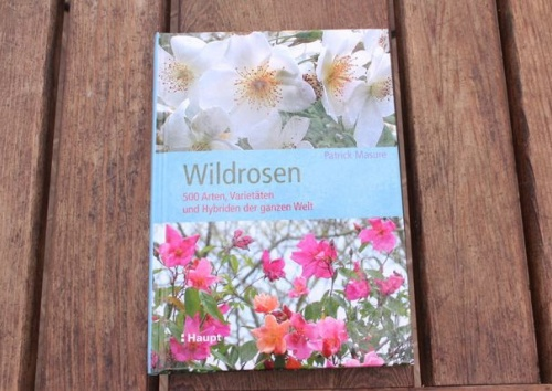 Wildrosen Buch